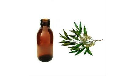 Óleo Ess. Tea Tree 125 ml