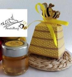 Mel 50gr com caixa abelhinha